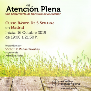 Curso Básico de 5 Semanas en Madrid @ Vidaes Centro de Bienestar