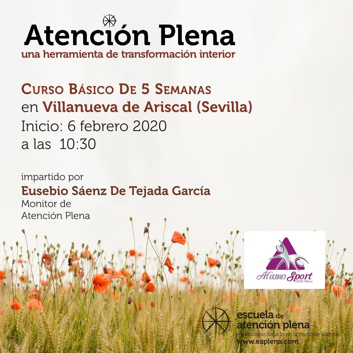 Curso Básico de 5 Semanas en Villanueva del Ariscal