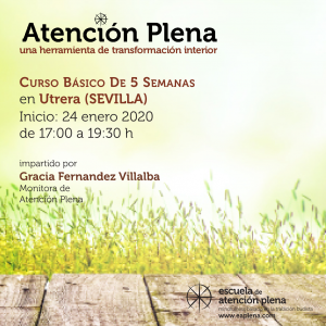 Curso Básico de 5 Semanas en Utrera (Sevilla) @ Despierta tu esencia