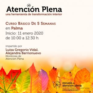 Curso Básico de 5 Semanas en Palma de Mallorca @ Unsui Zen