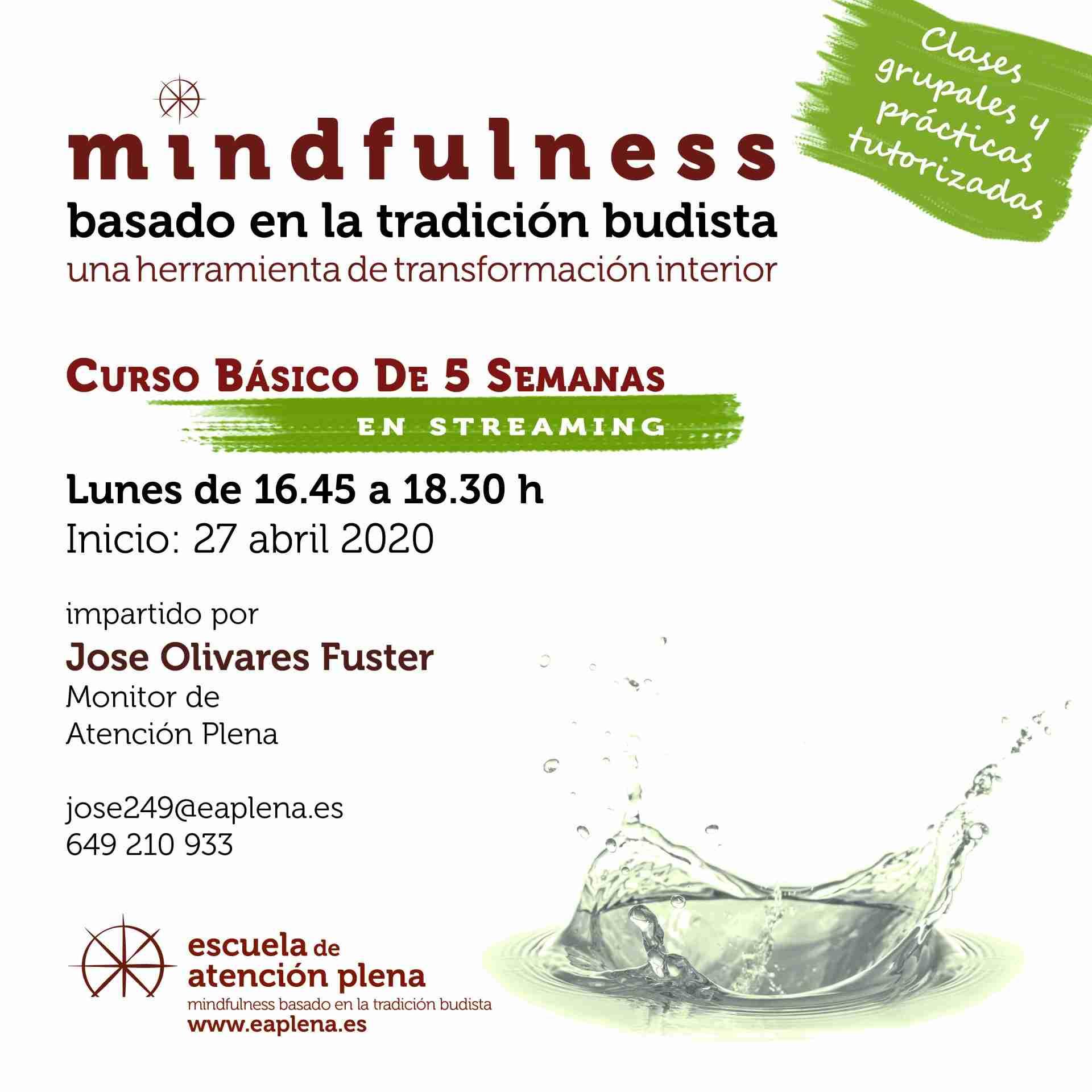 Curso Básico de 5 Semanas en streaming 1 547 José Olivares Fuster 27-04-2020