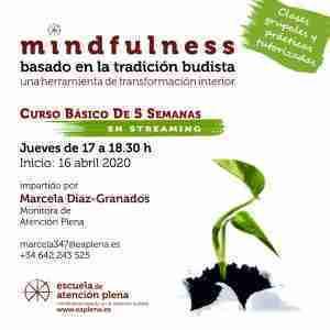 Curso Básico de 5 Semanas en streaming Fernandez Diaz-granados Marcela Sofia 16-04-2020