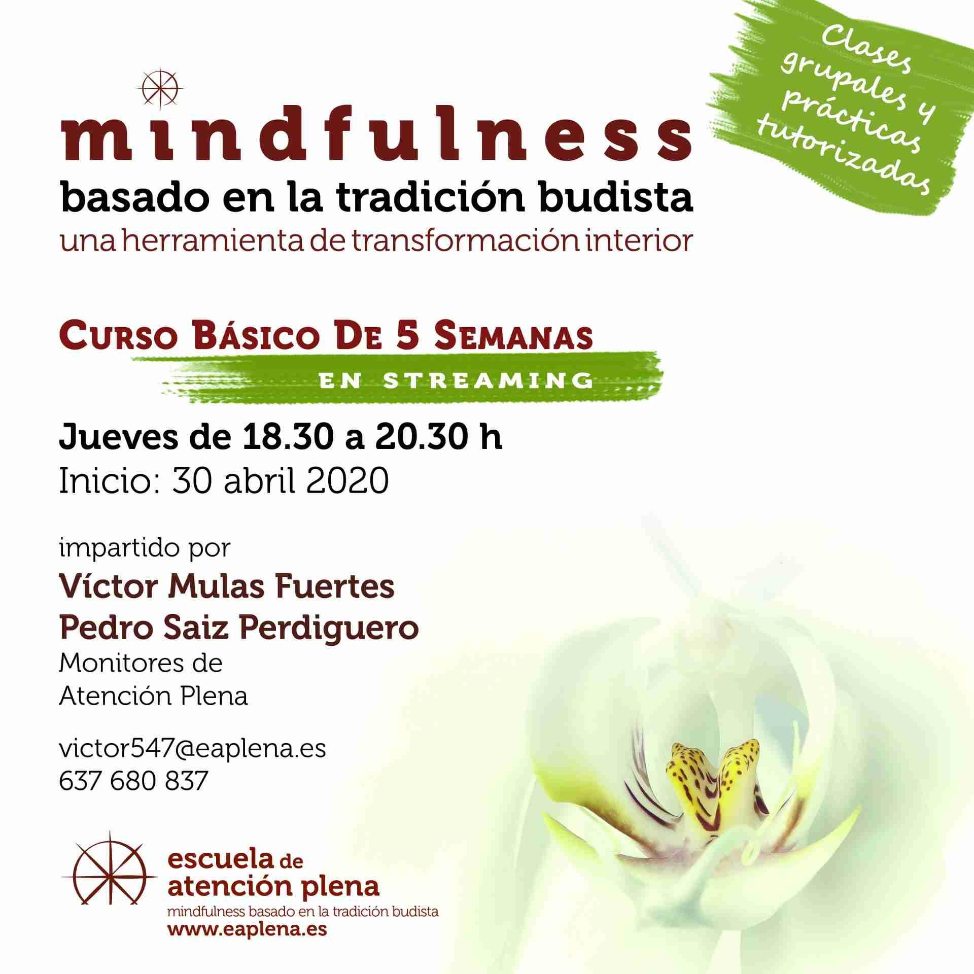 Curso Básico de 5 Semanas en streaming Mulas Fuertes Víctor 30-04-2020