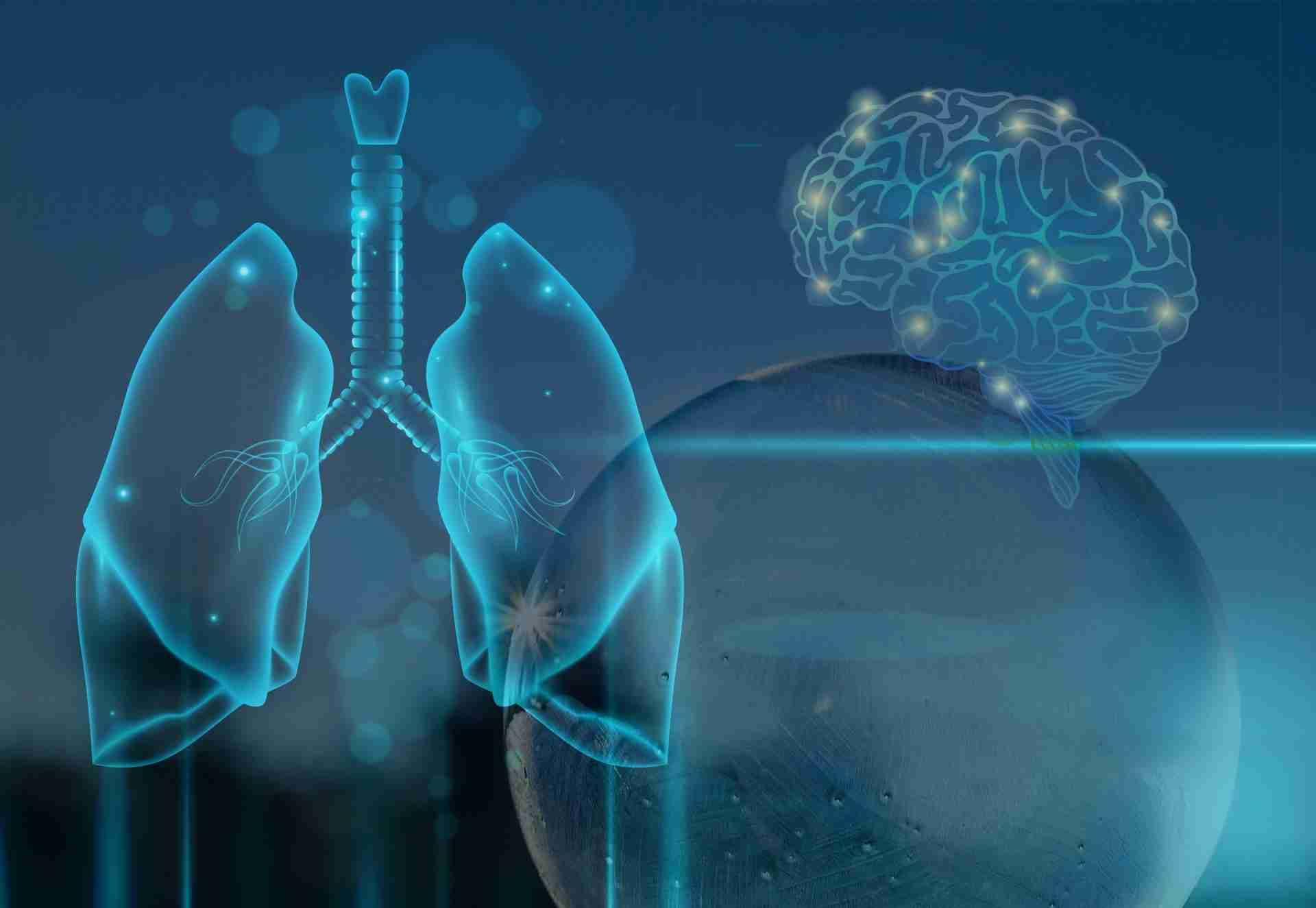 La respiración es el control remoto de tu cerebro