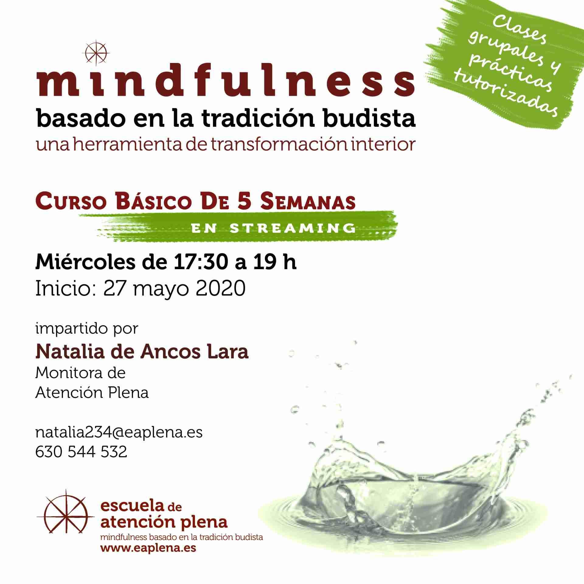 Curso Básico de 5 Semanas en streaming 1 234 de Ancos Lara Natalia 27-04-2020