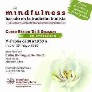 Curso Básico de 5 Semanas en streaming 3 511 Dominguez Reinhardt Carlos 13-05-2020