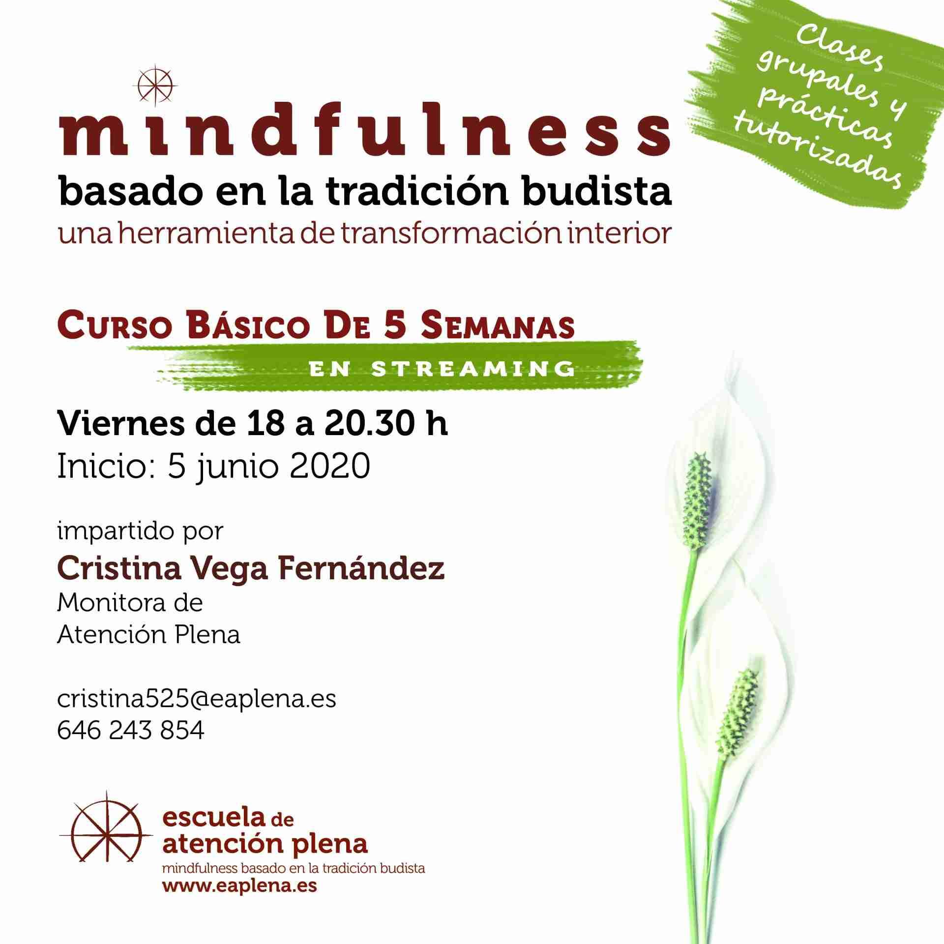 Curso Básico de 5 Semanas en streaming 4 525 Vega Fernández Cristina 05-06-2020