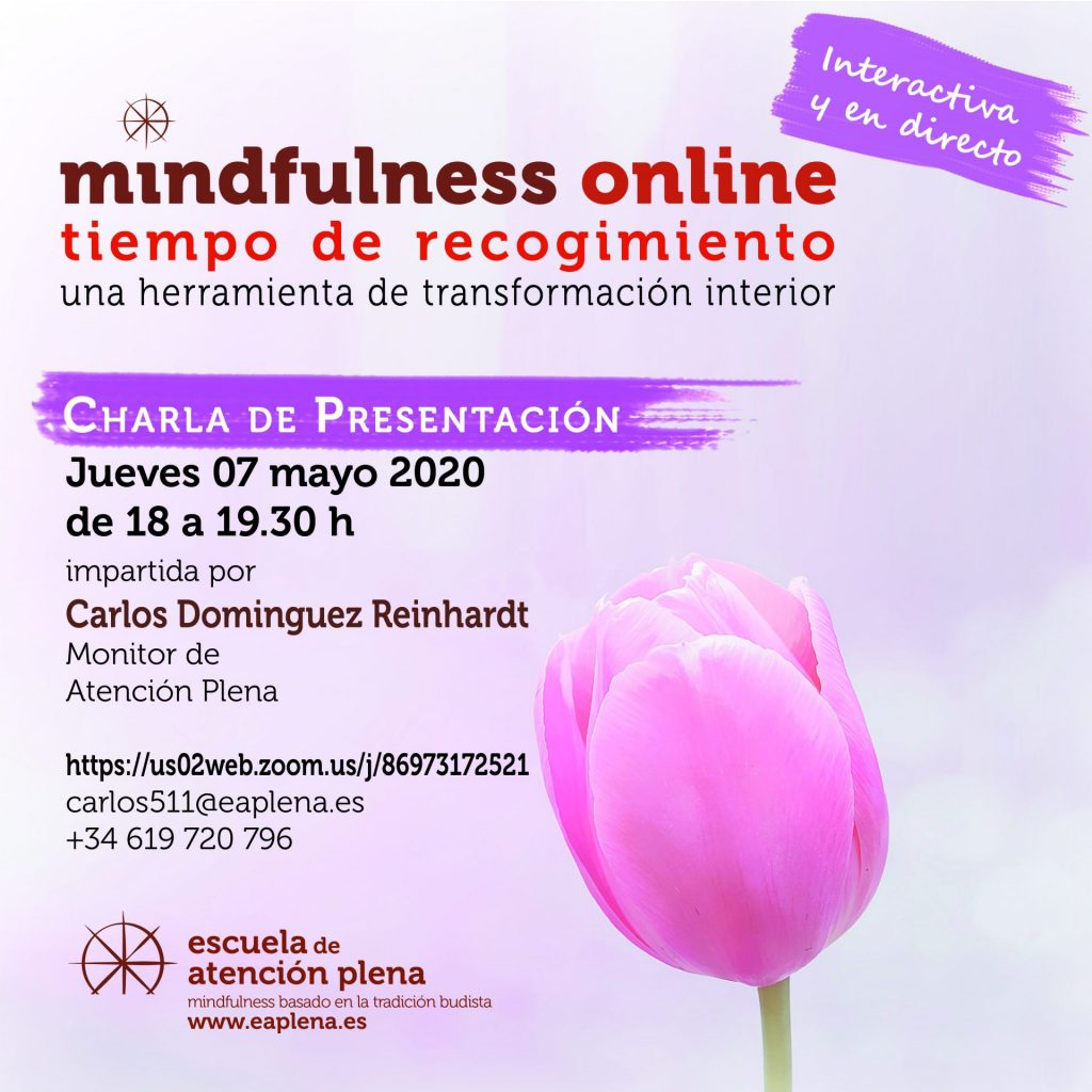 Charla de presentación online 1 511 Dominguez Reinhardt Carlos 7-05-2020