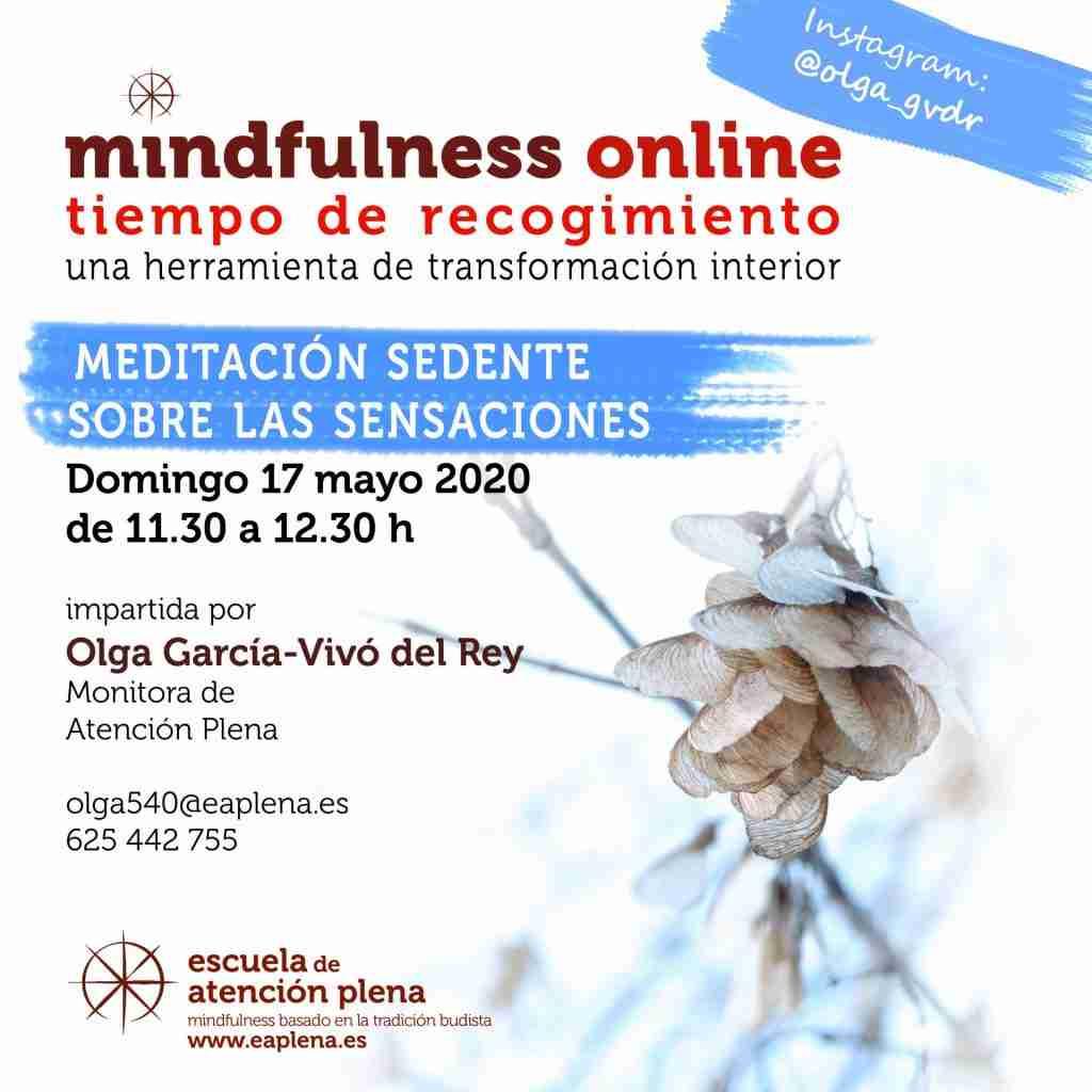 Meditación sedente sobre las sensaciones 540 García-Vivó del Rey Olga 17-05-2020