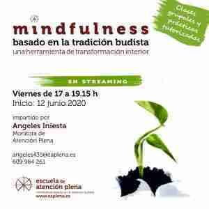 Curso Básico de 5 Semanas en streaming 2 435 Iniesta Bonillo Mª Angeles 12-06-2020