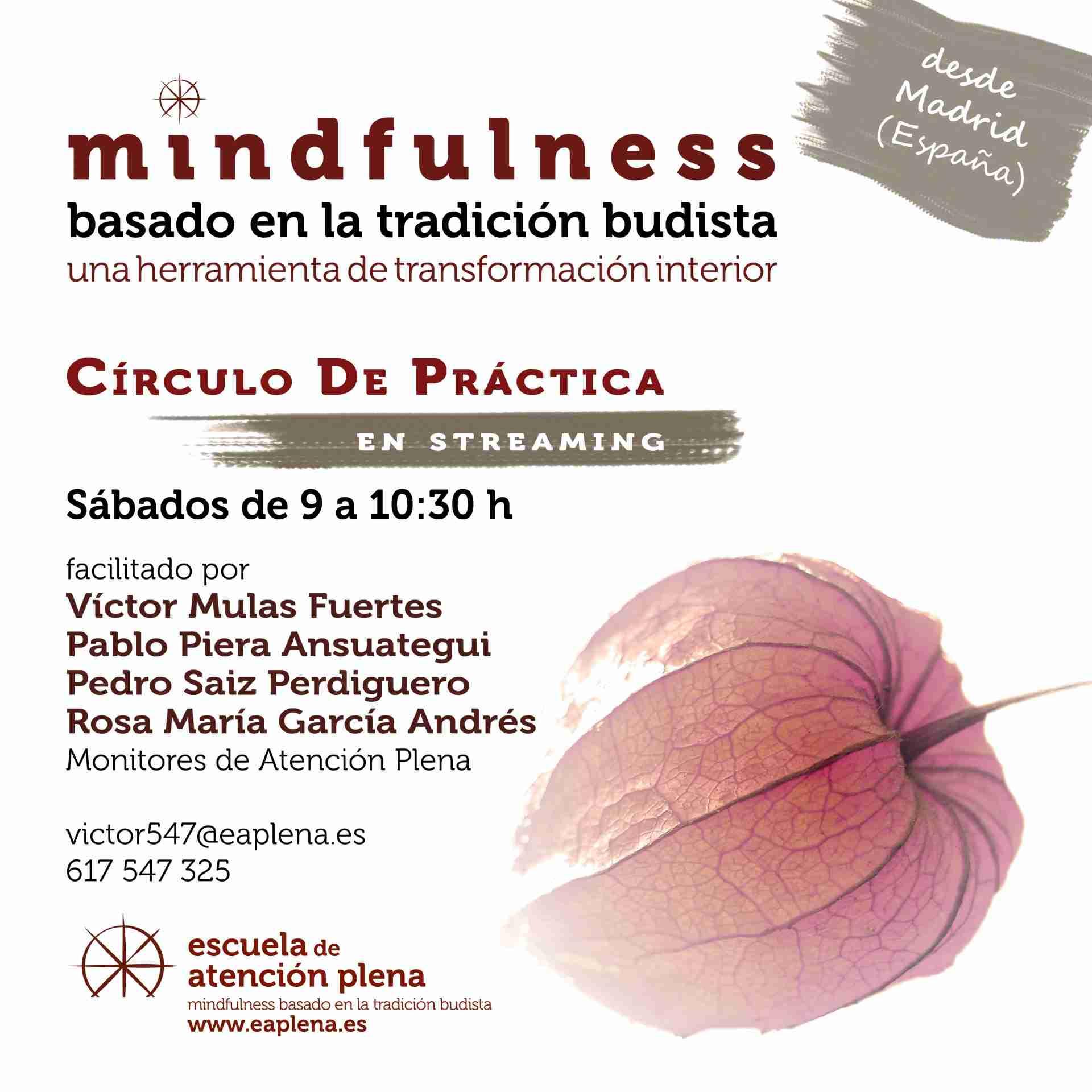 Circulo de Práctica en streaming 3 360 García Andrés Rosa María Miércoles 10