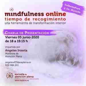Charla Online 3 435 Iniesta Bonillo Mª Angeles 05-06-2020