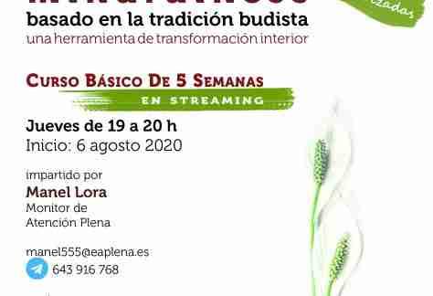 Curso Básico de 5 Semanas en streaming 4 555 Lora Manel 06-08-2020