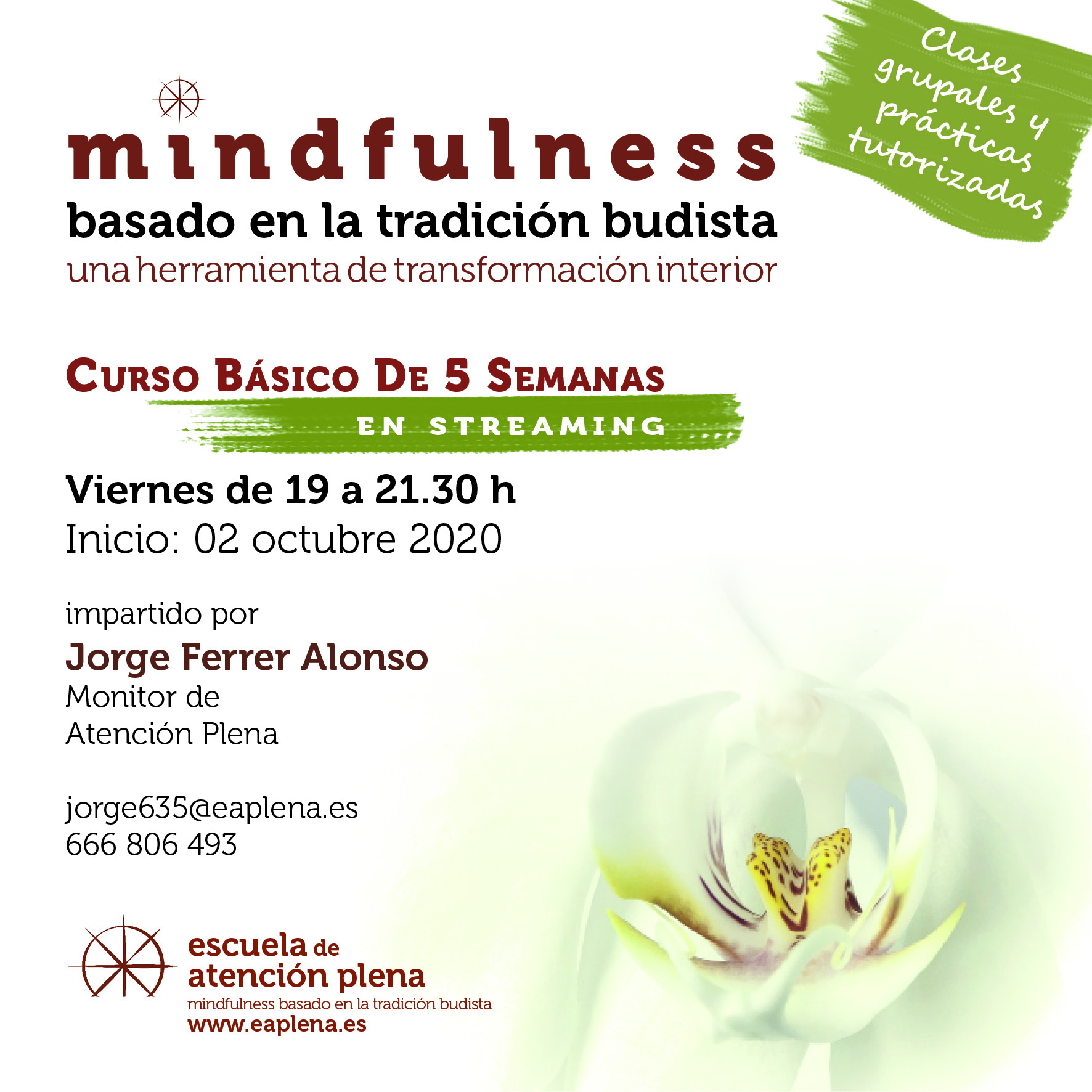 2020-10-02 Curso Básico de 5 Semanas en streaming 3 635 Ferrer Alonso Jorge