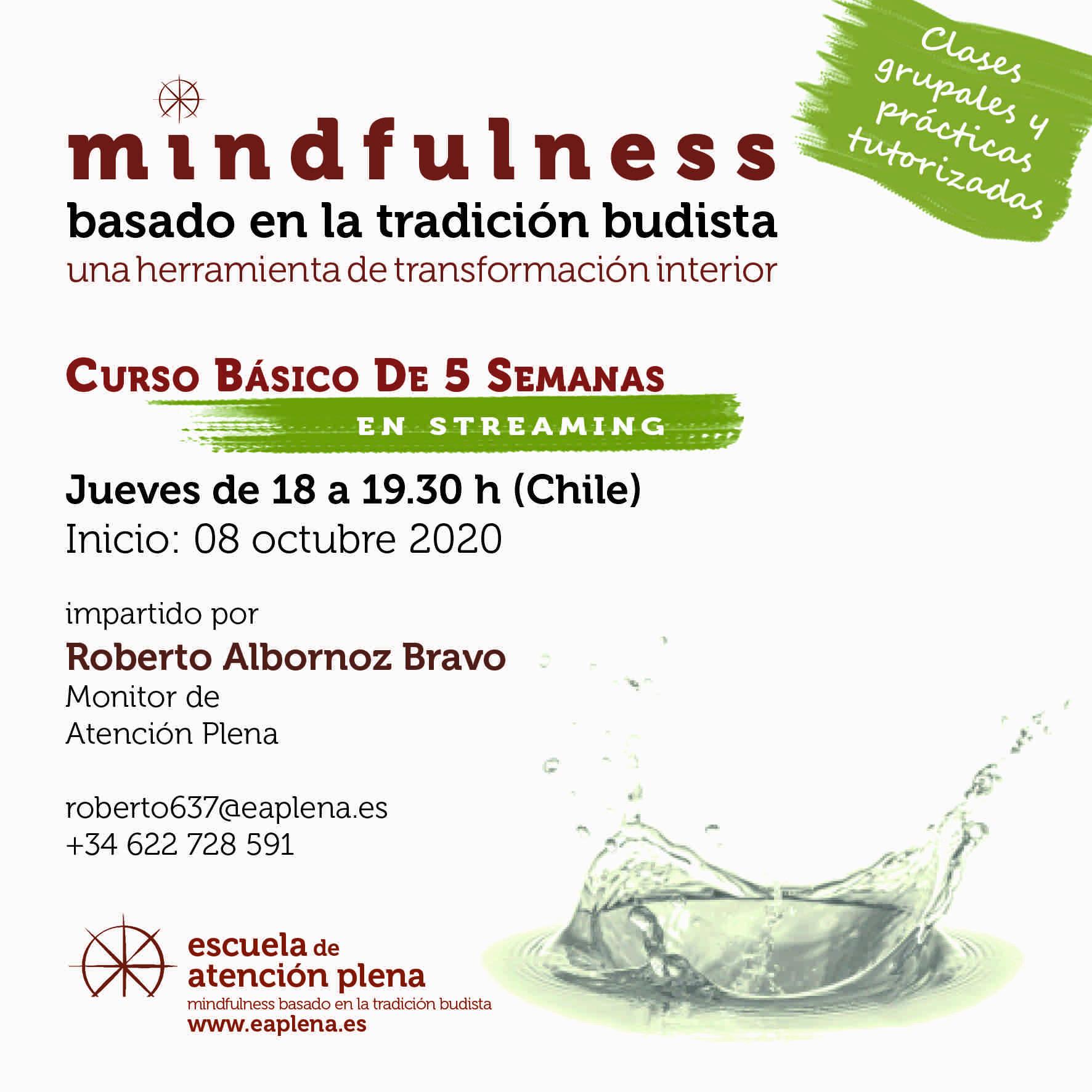 2020-10-08 Curso Básico de 5 Semanas en streaming 1 637 Albornoz Bravo Roberto