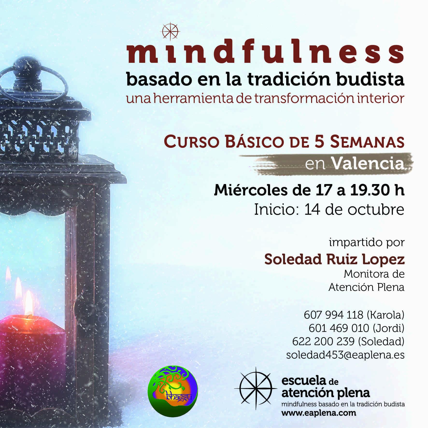 2020-10-14 Curso Básico de 5 Semanas en Valencia 3 Soledad Ruiz López