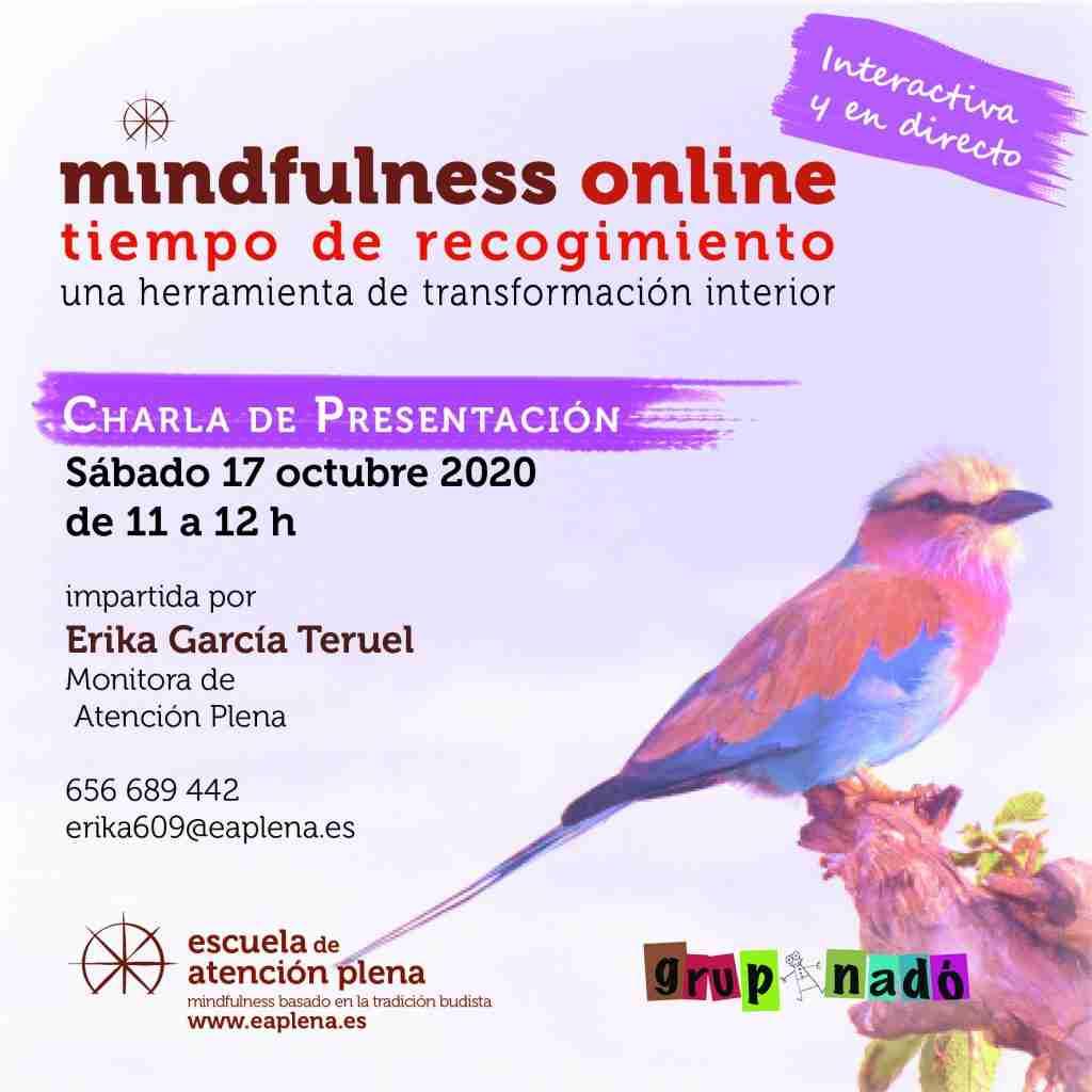2020-10-17 Charla de Presentación online 2 Erika García Teruel