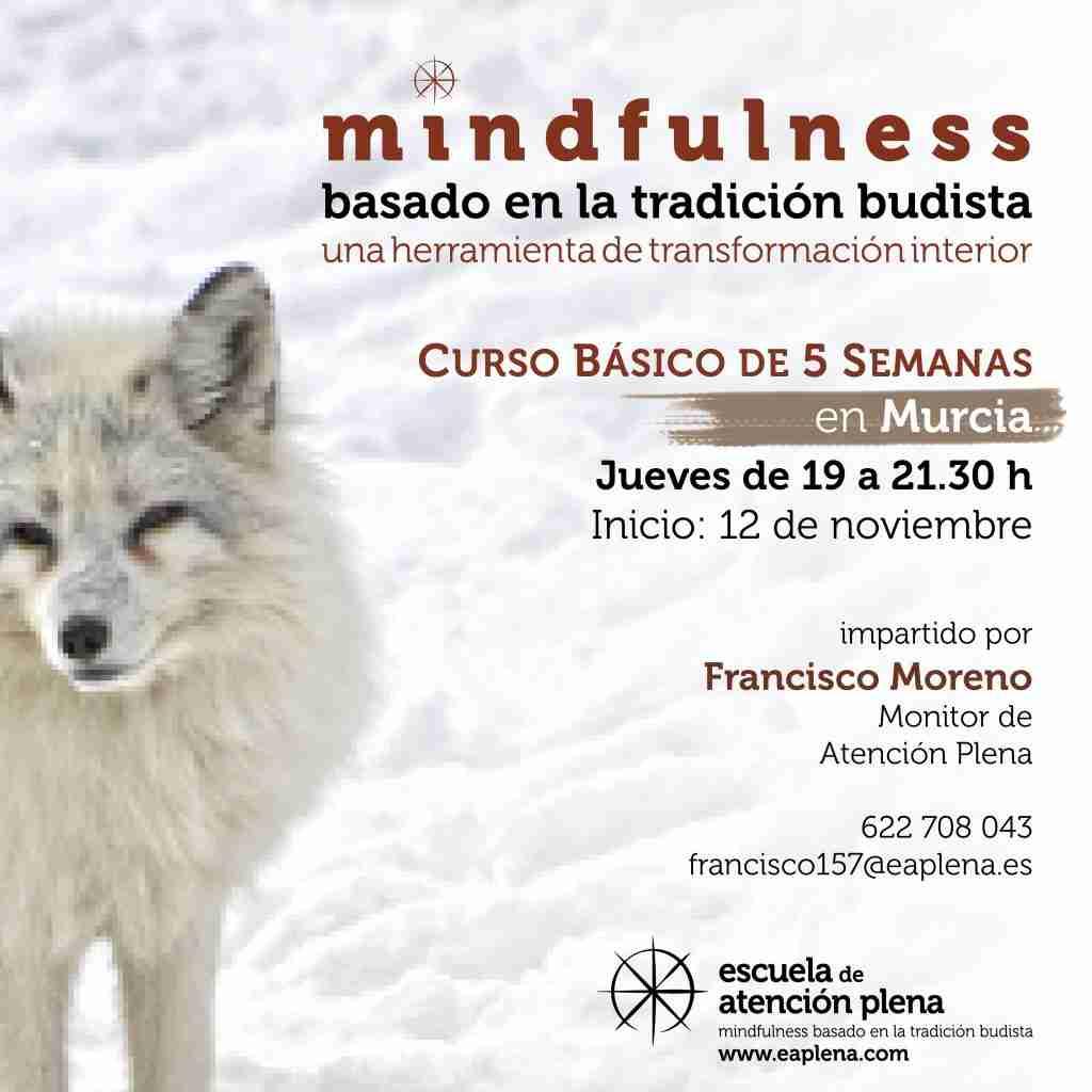 2020-11-12 Curso Básico de 5 Semanas 7 Francisco Moreno