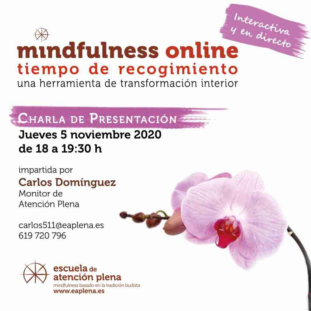 2020-10-29 Charla de Presentacion online 5 Carlos Dominguez Reinhardt