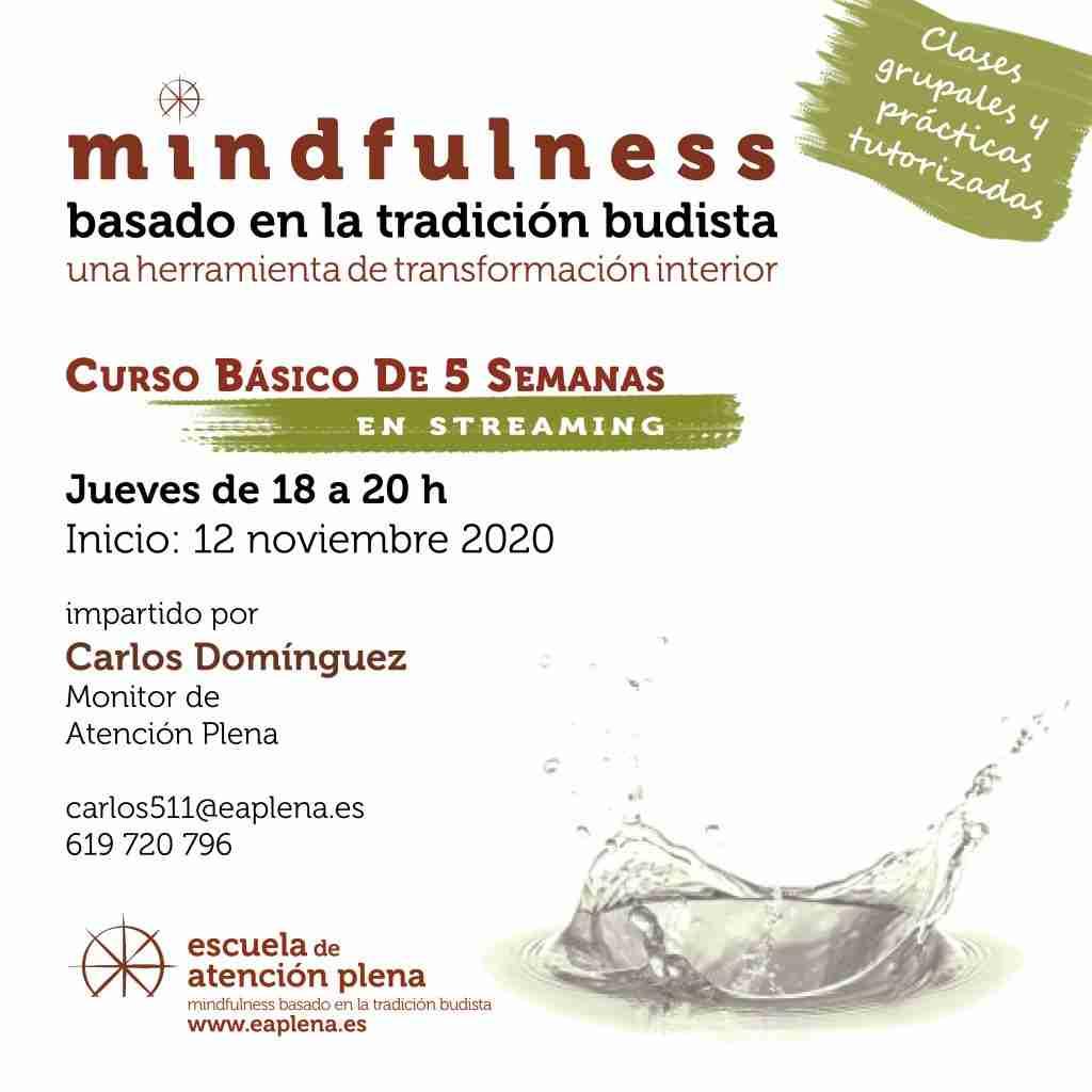 2020-11-5 Curso Básico 5 Semanas en streaming 1 Carlos Dominguez Reinhardt