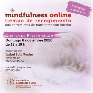 2020-11-8 Charla de presentación online 4 Isabel Sola Reche