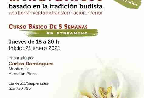 2021-01-21 Curso Básico de 5 Semanas en streaming 3 Carlos Dominguez