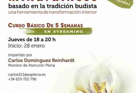 2021-01-28 Curso Básico de 5 Semanas en streaming 3 Carlos Dominguez