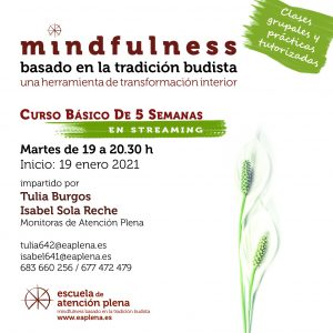 2021-01-19 Curso Básico de 5 Semanas en streaming 4 Tulia e Isabel
