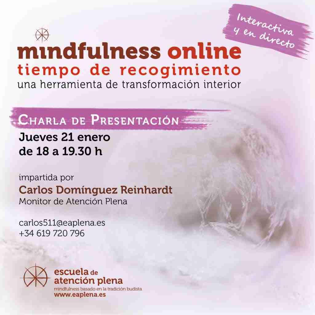2021-01-21 Charla de Presentacion online 4 Carlos Domínguez
