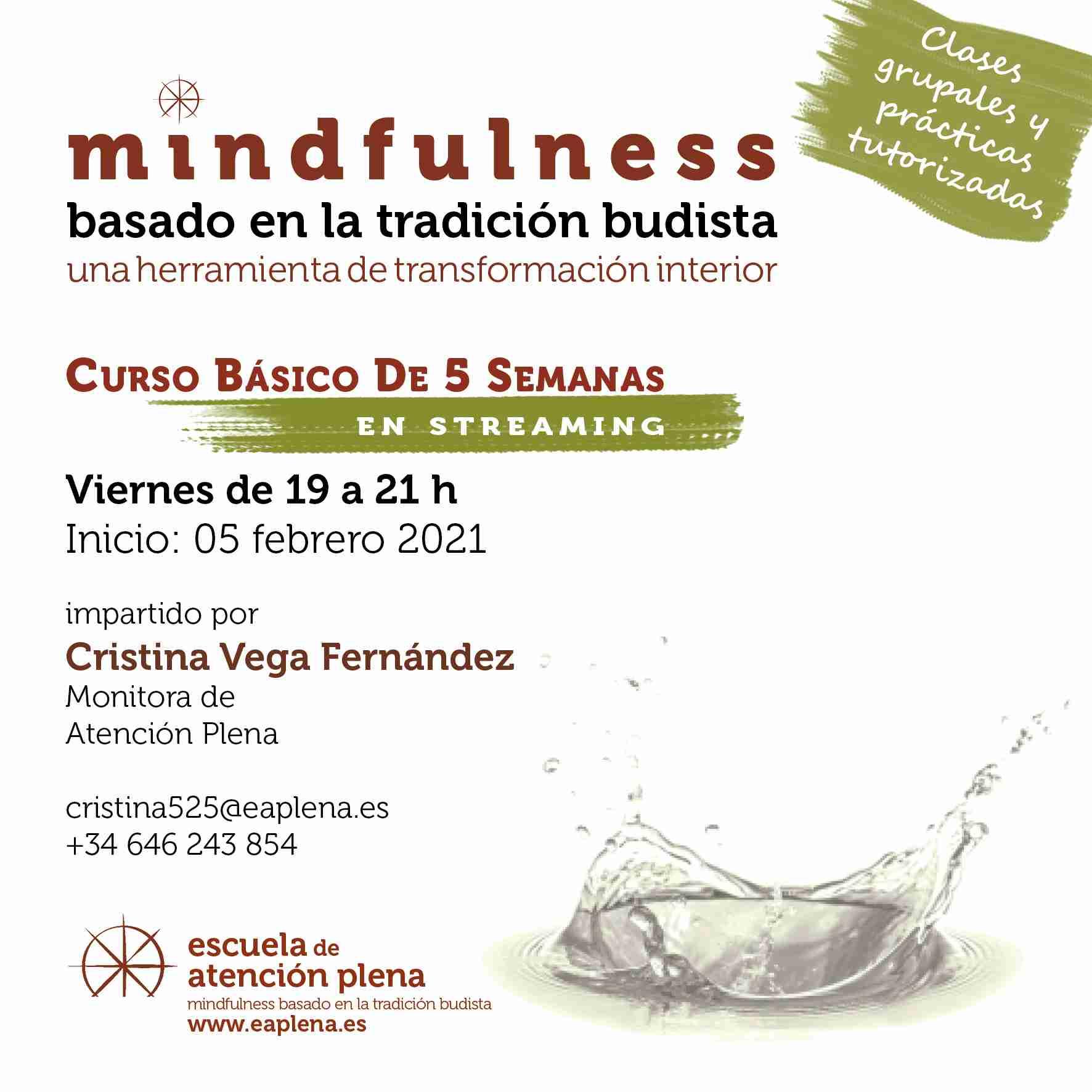 2021-02-05 Curso Básico de 5 Semanas en streaming 1 Cristina Vega